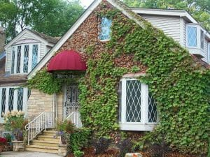 Residential Dome Awning Minneapolis